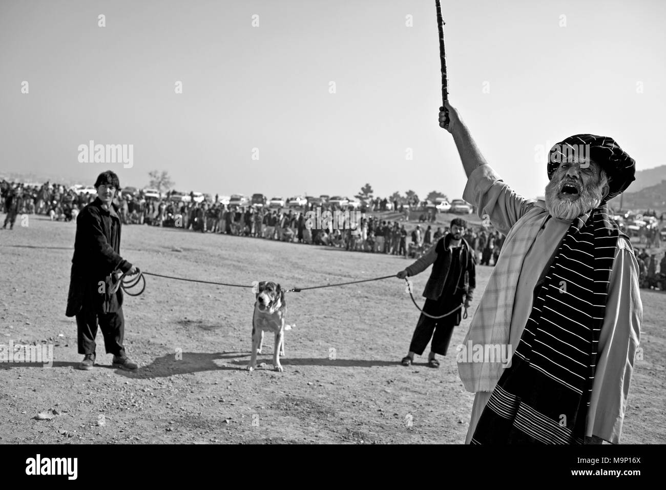 An announcer yells for the next contender during the weekly dog fights in Kabul, Afghanistan, Friday, November 20, 2009. Dog fighting was banned under the Taliban rule because it was considered a violation of Islamic law, but the popularity has returned to Afghanistan. - Stock Image