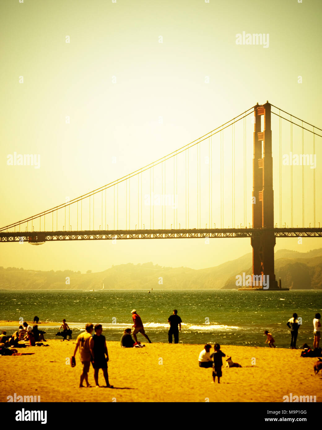 The beach at Chrissy Field with the Golden Gate Bridge in the background. San Francisco, CA - Stock Image