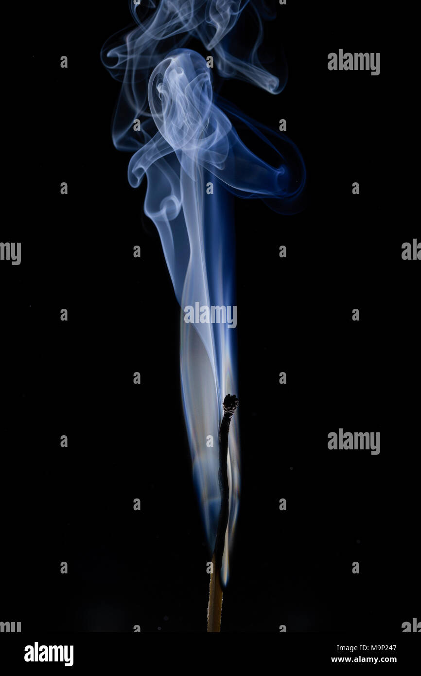 Burned match with blue smoke in front of a dark background, studio shot - Stock Image