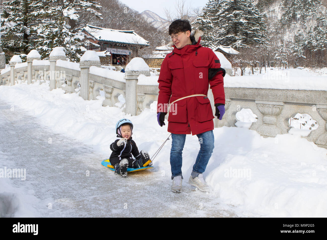 A father is towing his child on a sled over a stone bridge in the snowy forest of Seoraksan National Park, Gangwon-do, South Korea. In the background a Buddhist temple. Seoraksan is a beautiful and iconic National Park in the mountains near Sokcho in the Gangwon-do region of South Korea. The name refers to Snowy Crags Mountains. Set against the landscape are two Buddhist temples: Sinheung-sa and Beakdam-sa. This region is hosting the winter Olympics in February 2018. - Stock Image