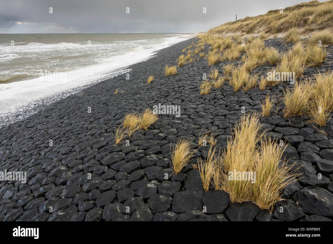 Stony beach, coastal protection, west beach, Sylt, North Frisian island, Schleswig-Holstein, Germany - Stock Image