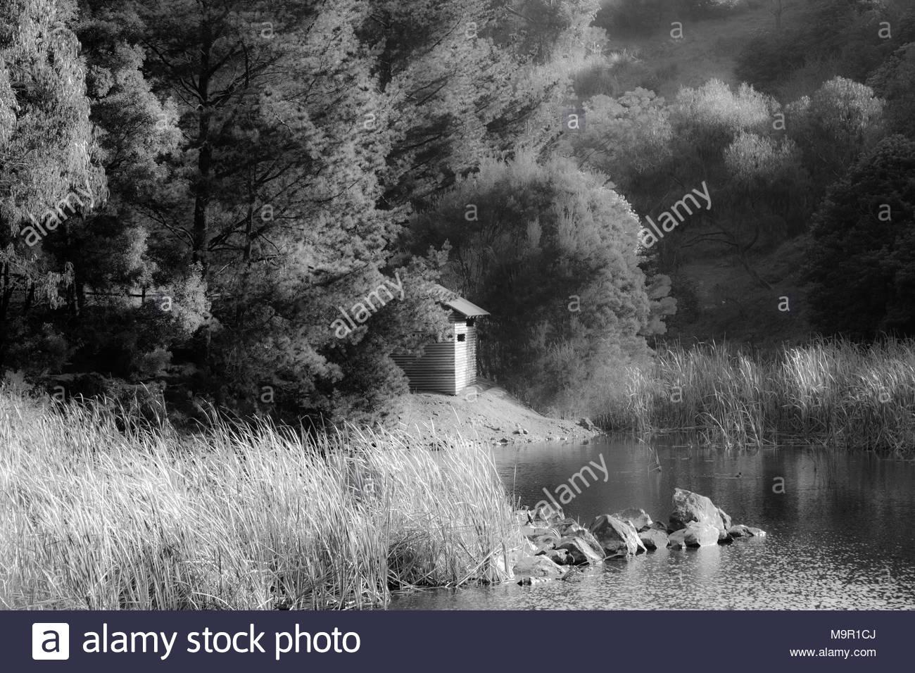 Wilson Park, Forest Lake, Black & White - Stock Image
