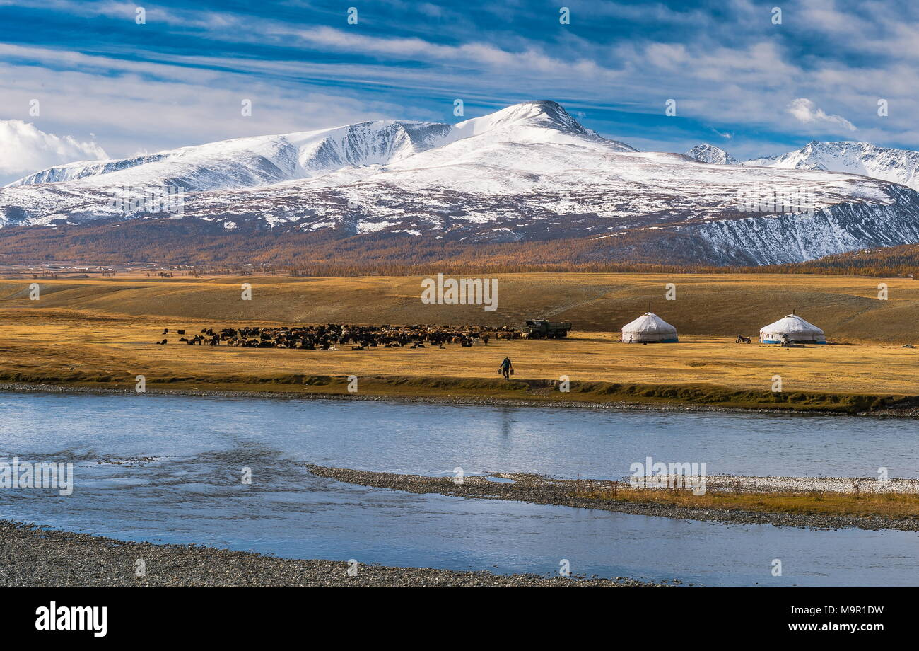 Flock of sheep with yurts and shepherd on the banks of Khoton Lake, snow-covered mountains in the back, Mongolia - Stock Image