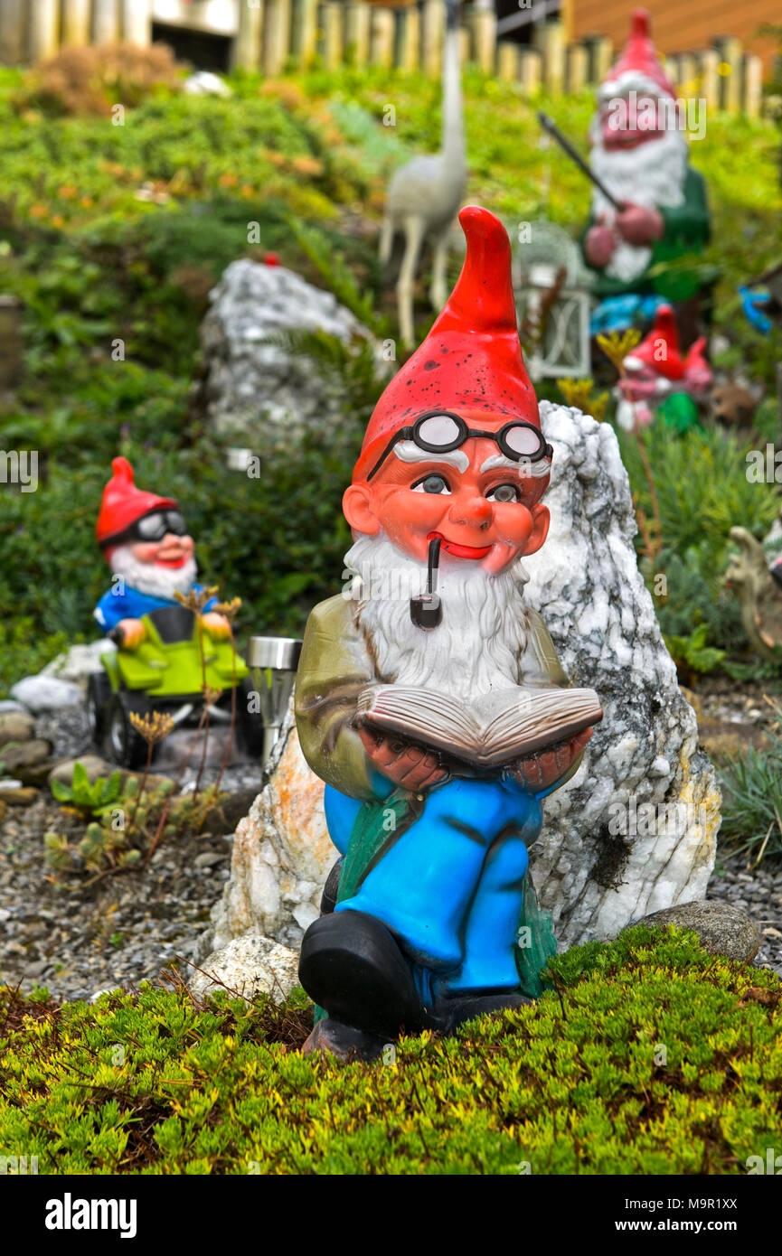 Garden gnome with beard and pipe reads a book, Engelberg, Canton Obwalden, Switzerland - Stock Image