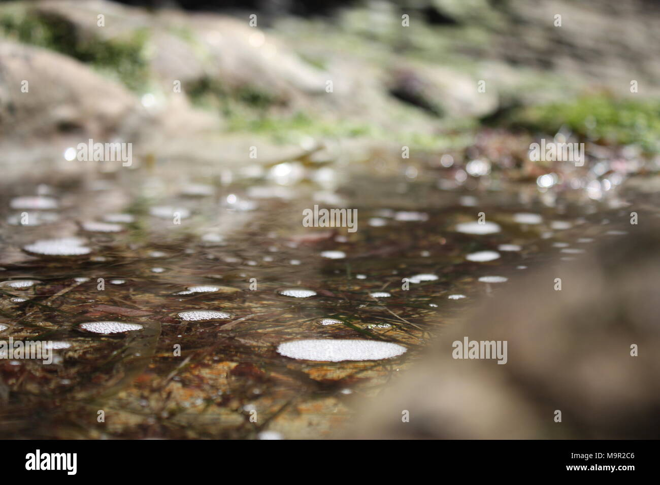 Dirt Water - Stock Image