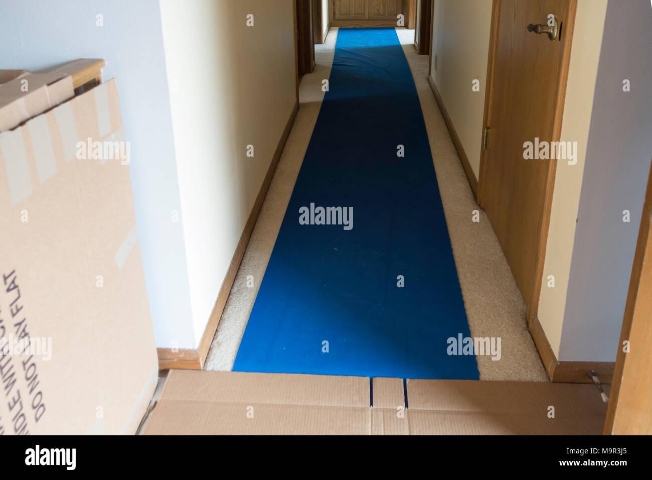 Blue Plastic Floor Runner And Flattened Cardboard Boxes Laid