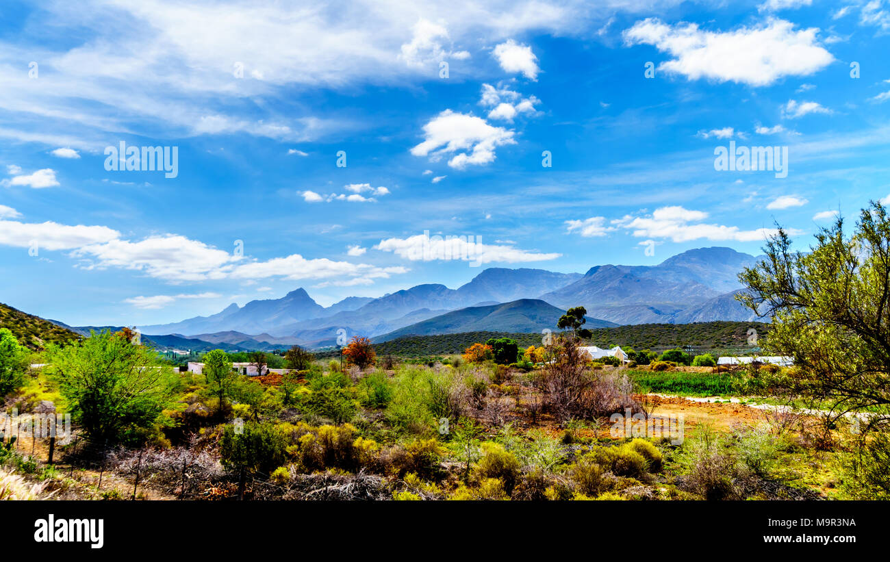 The Little Karoo region of the Western Cape Province of South Africa with the majestic Grootswartberg Mountains on the horizon - Stock Image