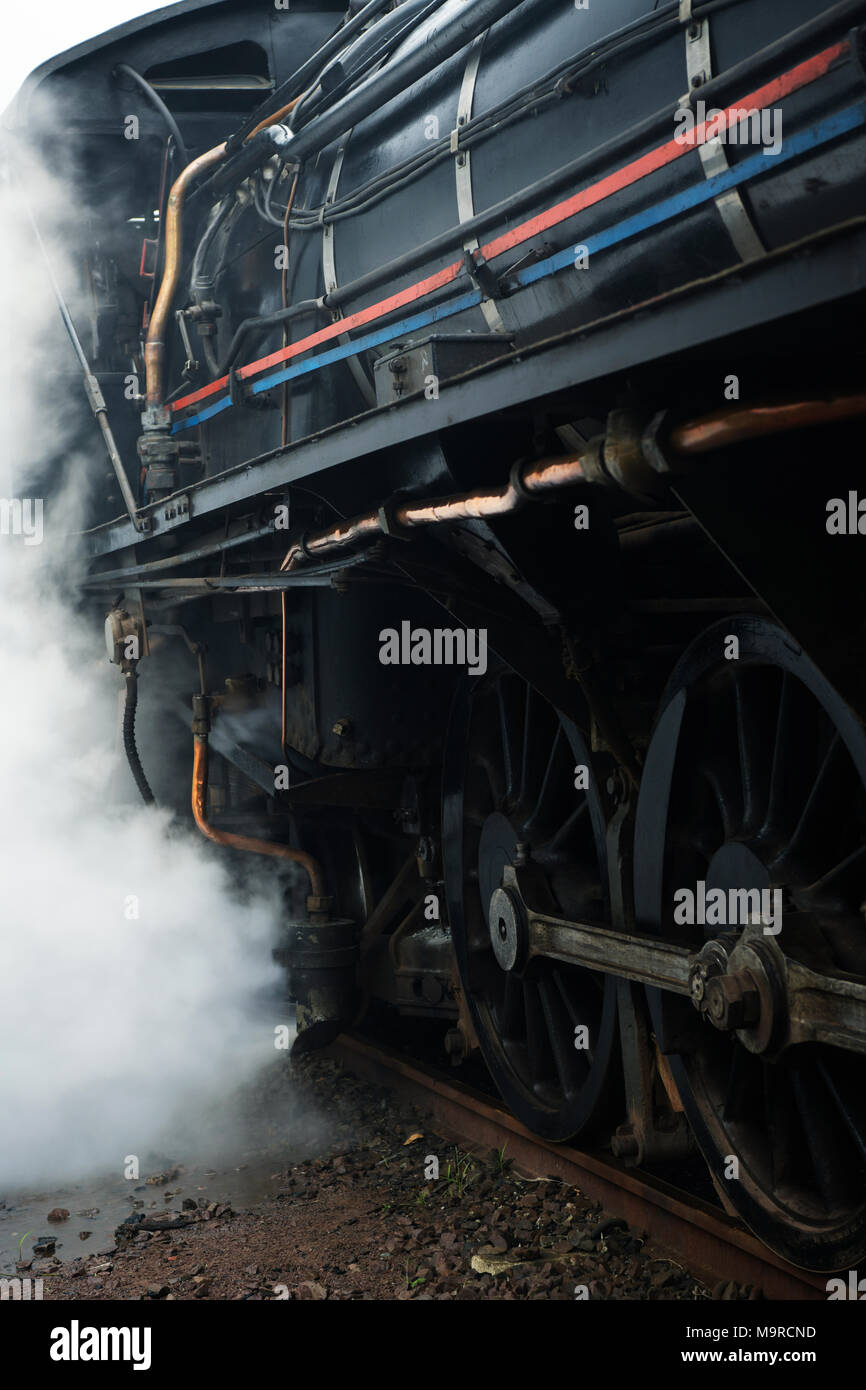 Working class 19D vintage steam locomotive discharging steam under pressure while providing service as the Inchanga choo-choo classic rail experience Stock Photo