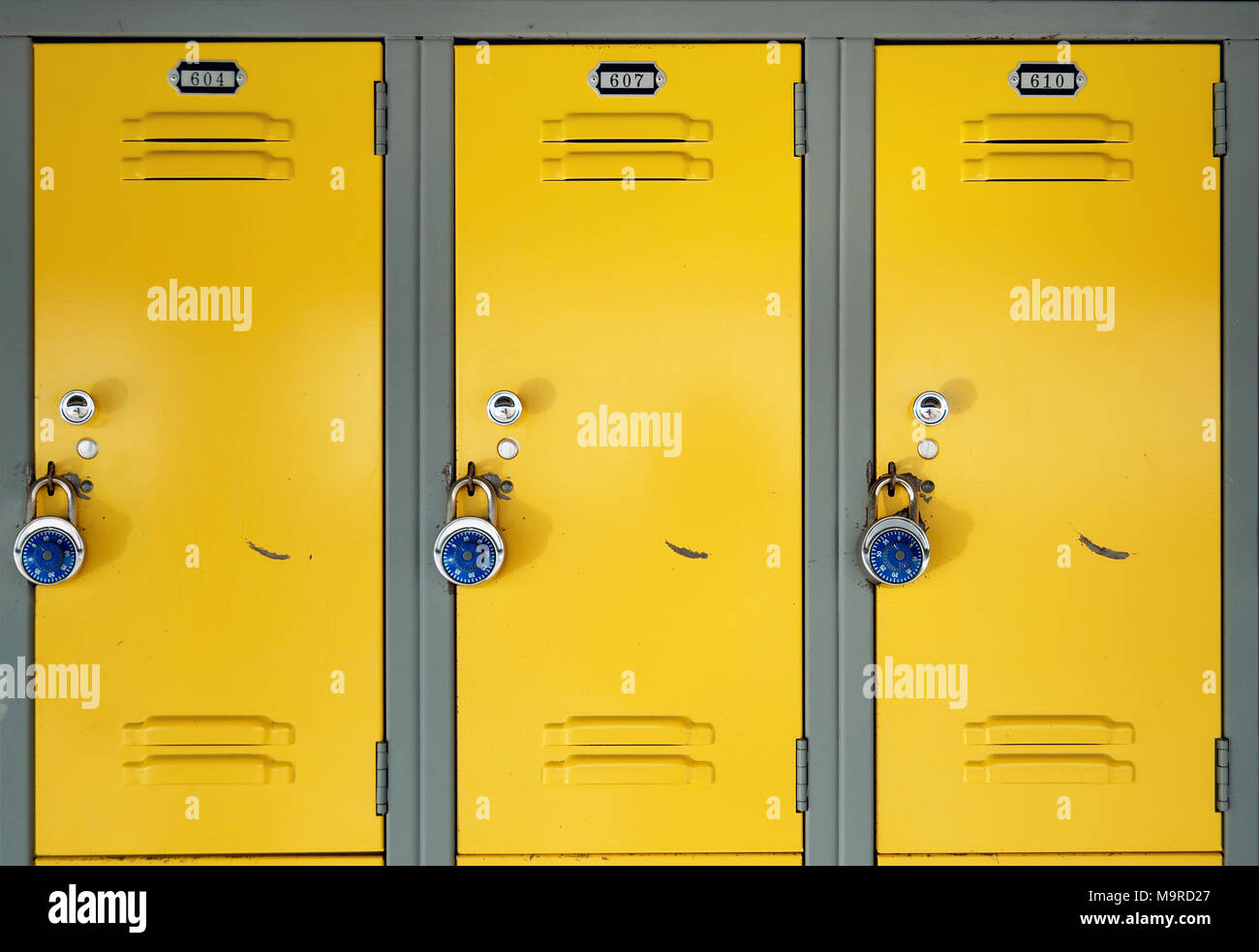 Yellow school lockers with locks - Three locker doors of three yellow lockers in the hallway of a school each with a stainless steel combination lock. & Yellow school lockers with locks - Three locker doors of three ...