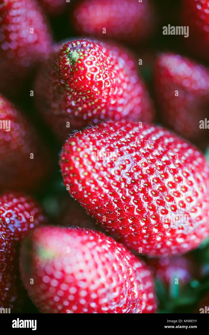 Fresh raw strawberries - Stock Image