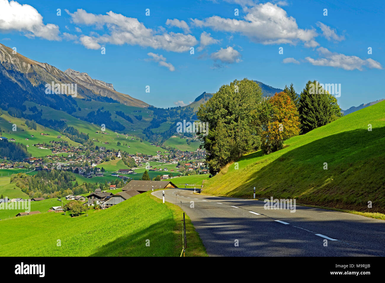 Europe, Switzerland, Vaud (Vaud), Château-d'Oex, route of the Mosses, nightmare scenery, place of interest, tourism, traditionally, trees, wood, plant Stock Photo