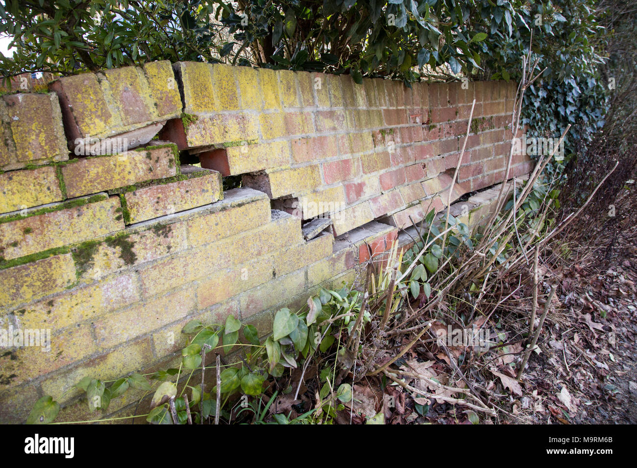 Impact Damage To Red Brick Garden Wall Caused By Vehicle Reversing