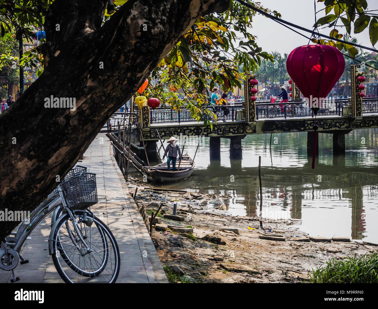 Colourful lanterns hanging in trees alongside riverbank in Hoi An, Vietnam - Stock Image