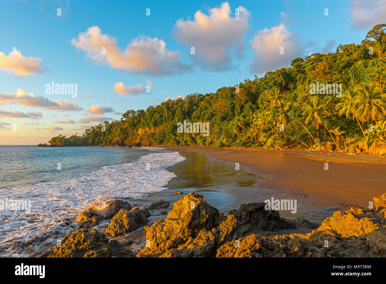Sunset along the Pacific Ocean and tropical rainforest of Corcovado national park in Costa Rica, Central America. - Stock Image