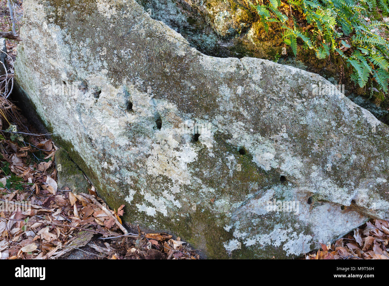 Remnants of stone splitting (plug and feathers) in the area of 'The Great Trestle' along the Profile & Franconia Notch Railroad in Franconia, NH - Stock Image