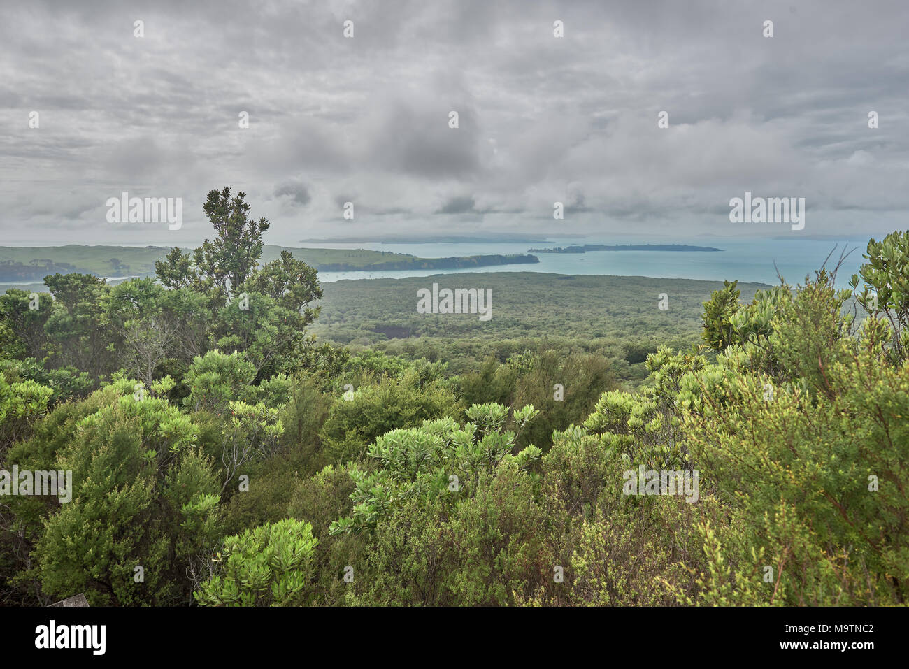 View across the Hauraki Gulf from Rangitoto summit New Zealand - Stock Image