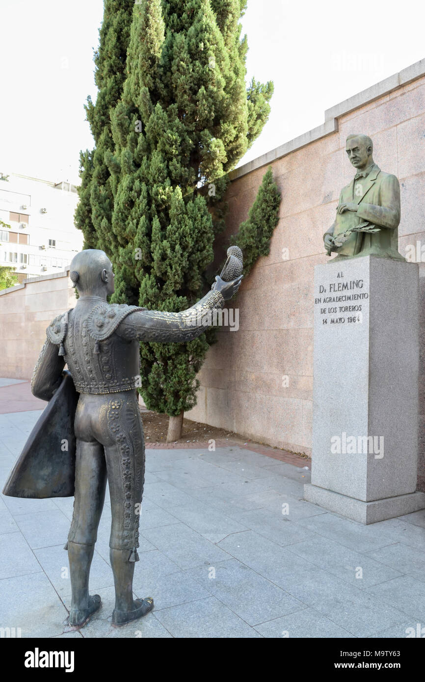 Sculpture of a matador paying respect to Alexander Fleming for his discovery of penicillin and the impact it had on survival for bullfighters - Stock Image