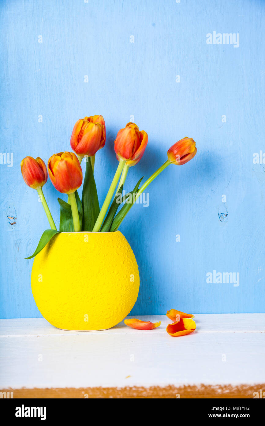 Tulips in a yellow vase wooden background. Beautiful spring bouquet. - Stock Image