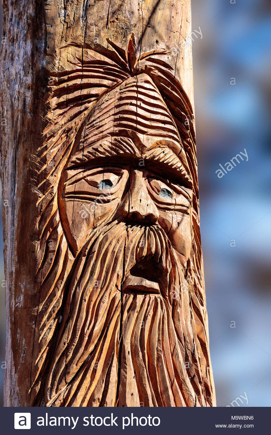 Old man tree wood spirit carving in an already dying tree in High Park Toronto Ontario Canada by woodcarver Colin Partridge - Stock Image