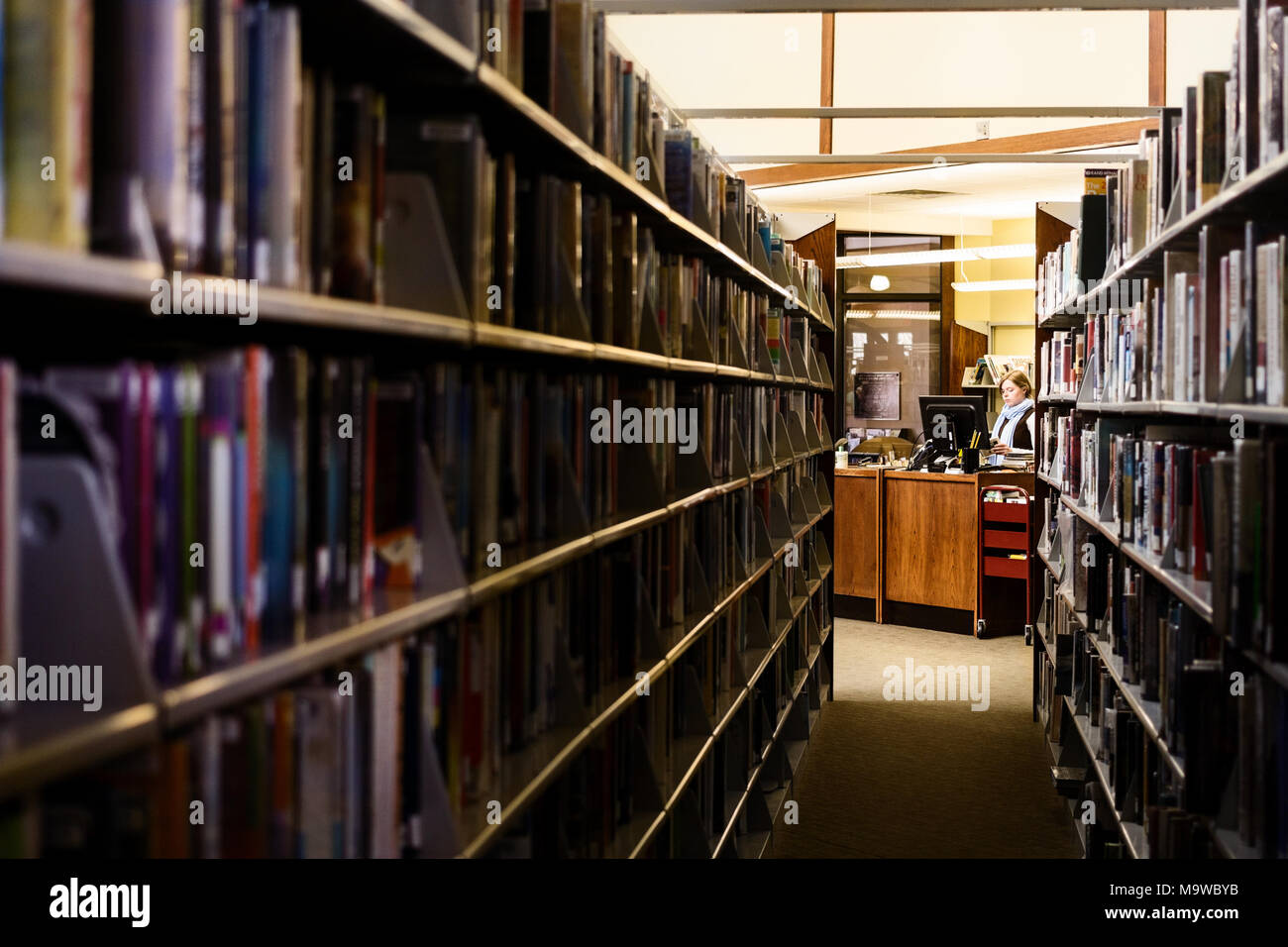 Lines of book shelves lead to a librarian at a desk - Stock Image