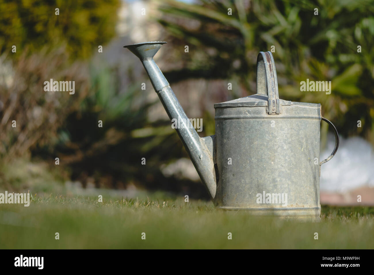 Watering can in a garden against  blurry background - Stock Image