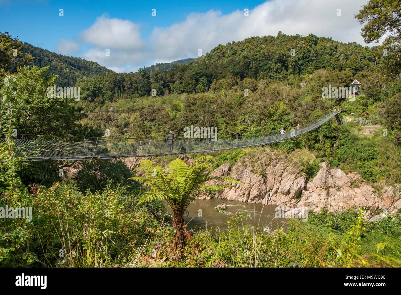 Swingbridge over Upper Buller Gorge, South Island, New Zealand - Stock Image