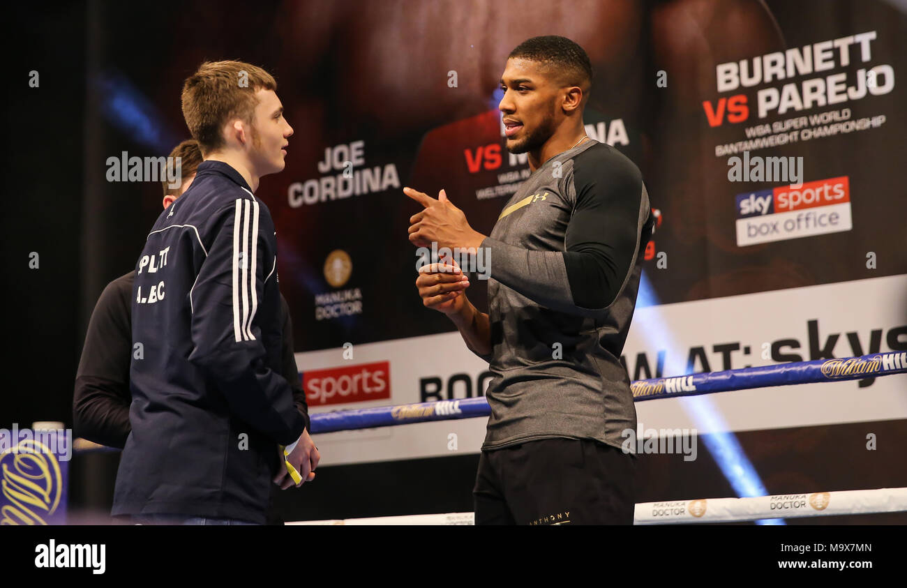 Communication on this topic: When MH met Anthony Joshua, when-mh-met-anthony-joshua/