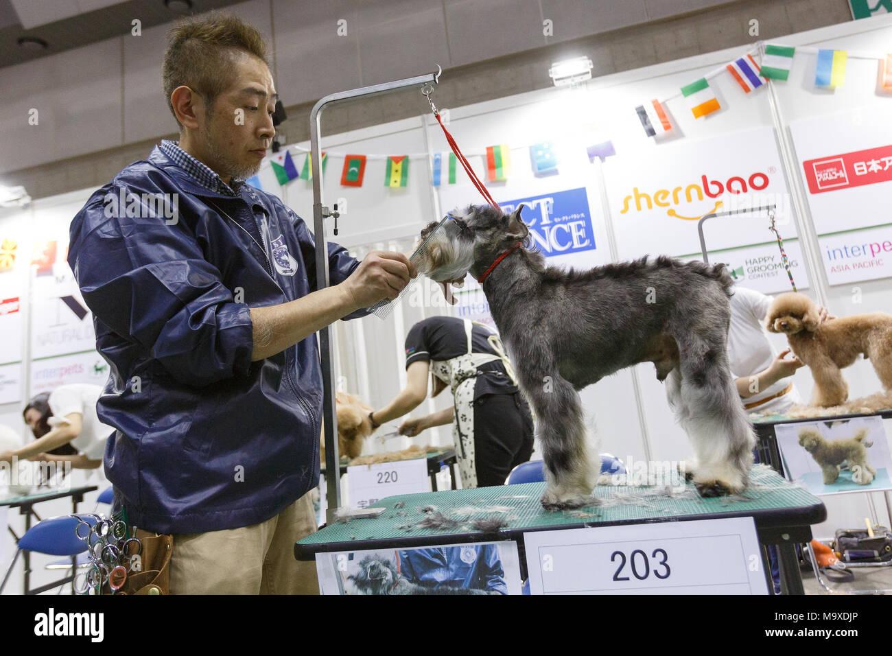 Leonid Yarmolnik dogs bitten by a 2-year-old girl 29.06.2010 45