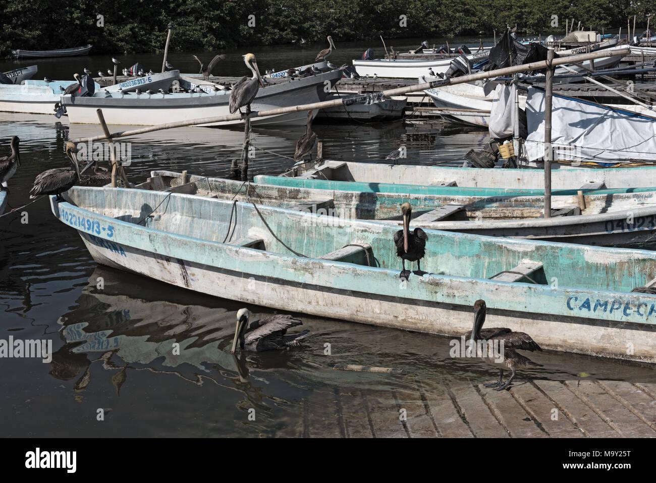 Fishing boats in the darsena de san francisco, Campeche, Mexico - Stock Image