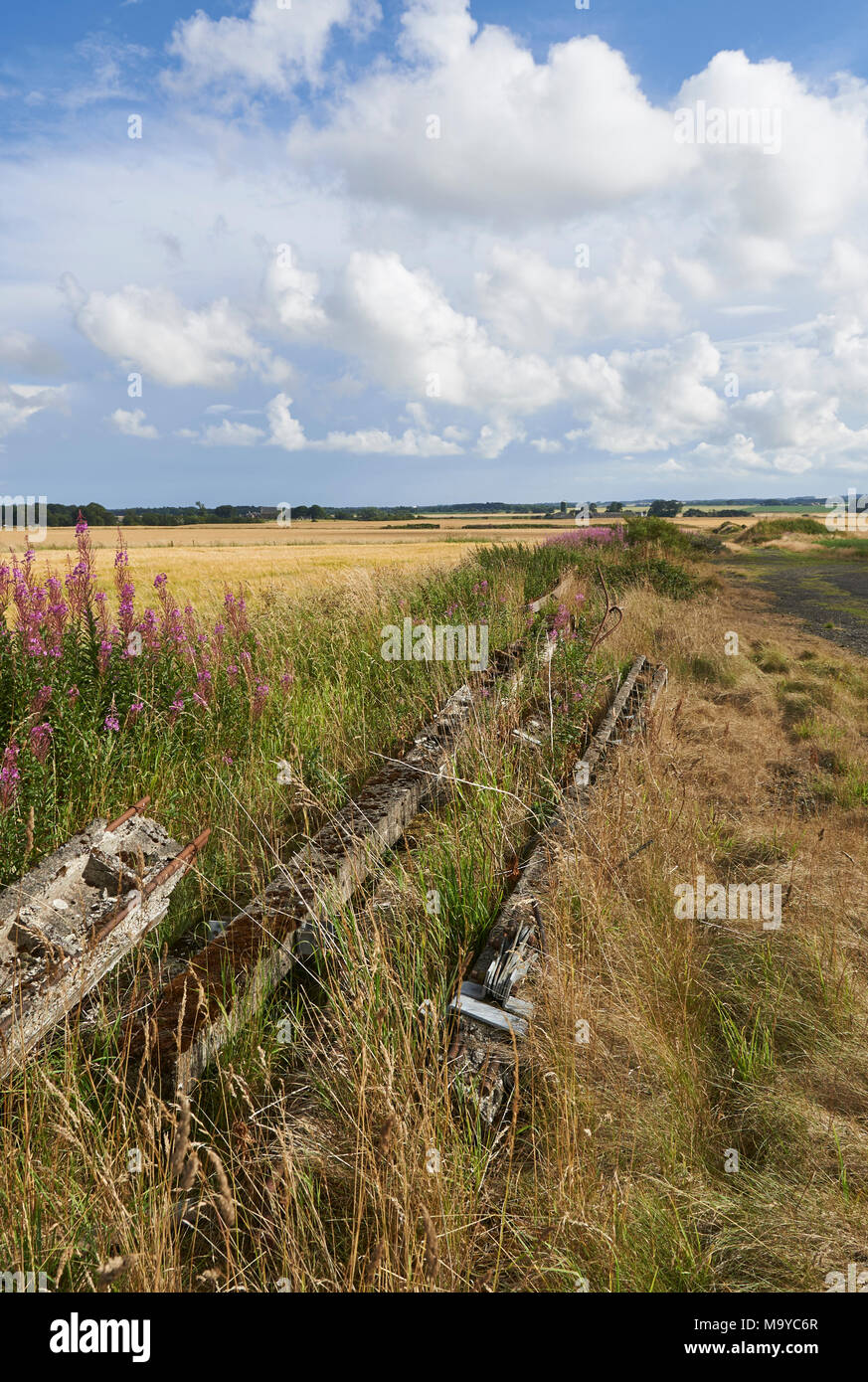 Old Concrete telegraph poles as used in the 2nd World war, lie abandoned near a hard standing on the Old RAF Kinnell Airfield. - Stock Image