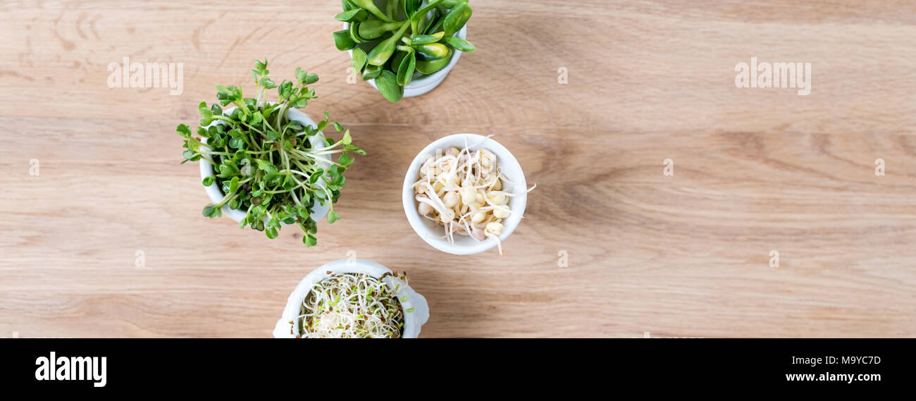 Different Types Of Micro Greens In White Bowls For Sauces On Wooden