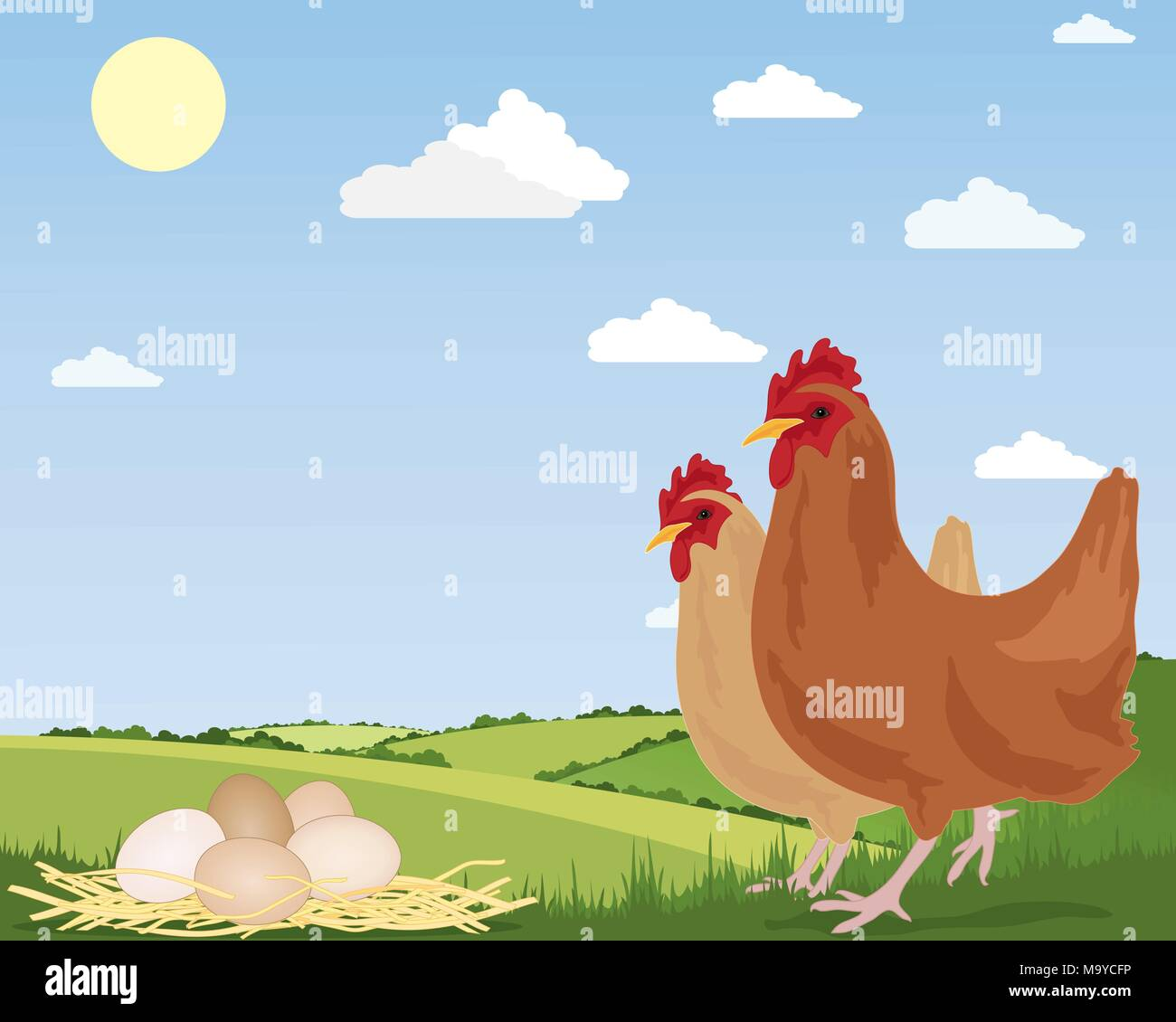 an illustration of two free range chickens with newly laid eggs on straw and scenic countryside under a blue summer sky - Stock Vector