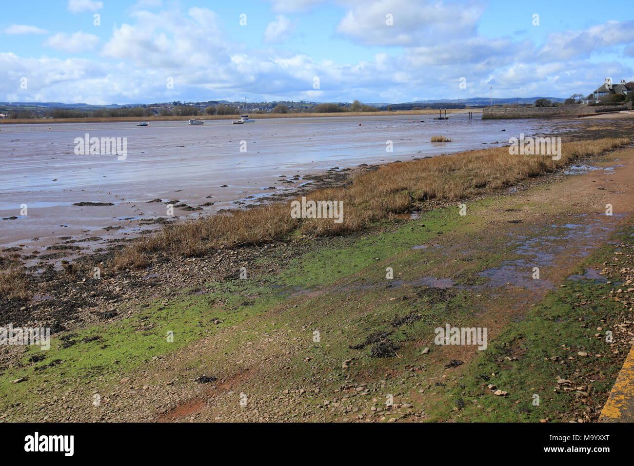 Exe estuary view towards Topsham from the goat walk, Topsham, Devon, England UK - Stock Image