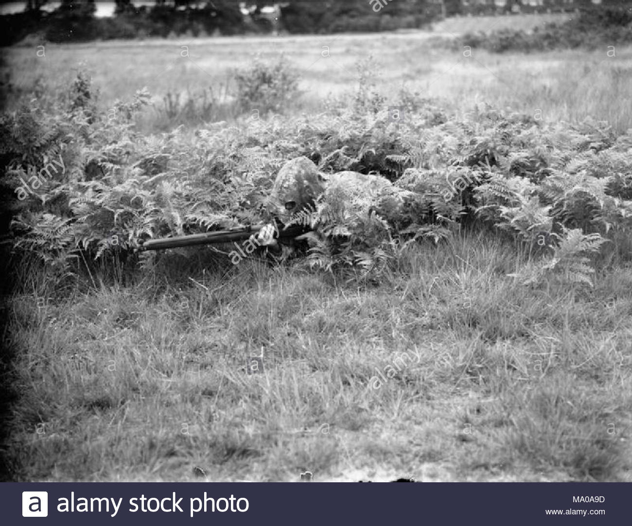 The British Army In United Kingdom 1939 45 Camouflaged Lovat Scout Prone Firing Position Dressed Sniper Suit Bisley Surrey 9 July 1940