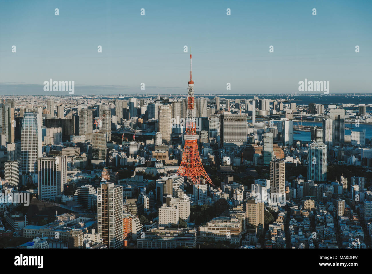 Tokyo skyline and buildings from above, view of the Tokyo tower - Stock Image