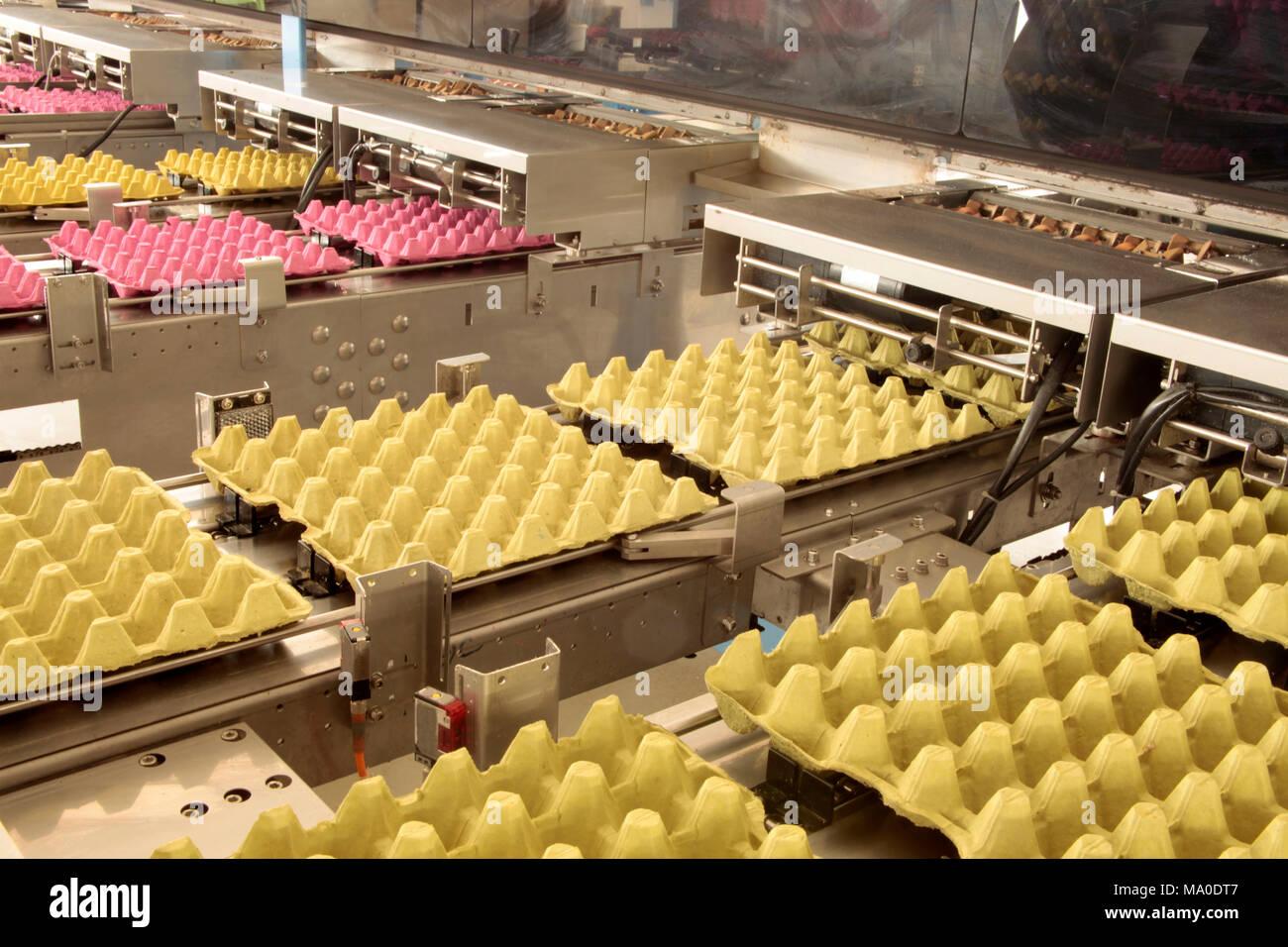Egg Carton Stock Photo