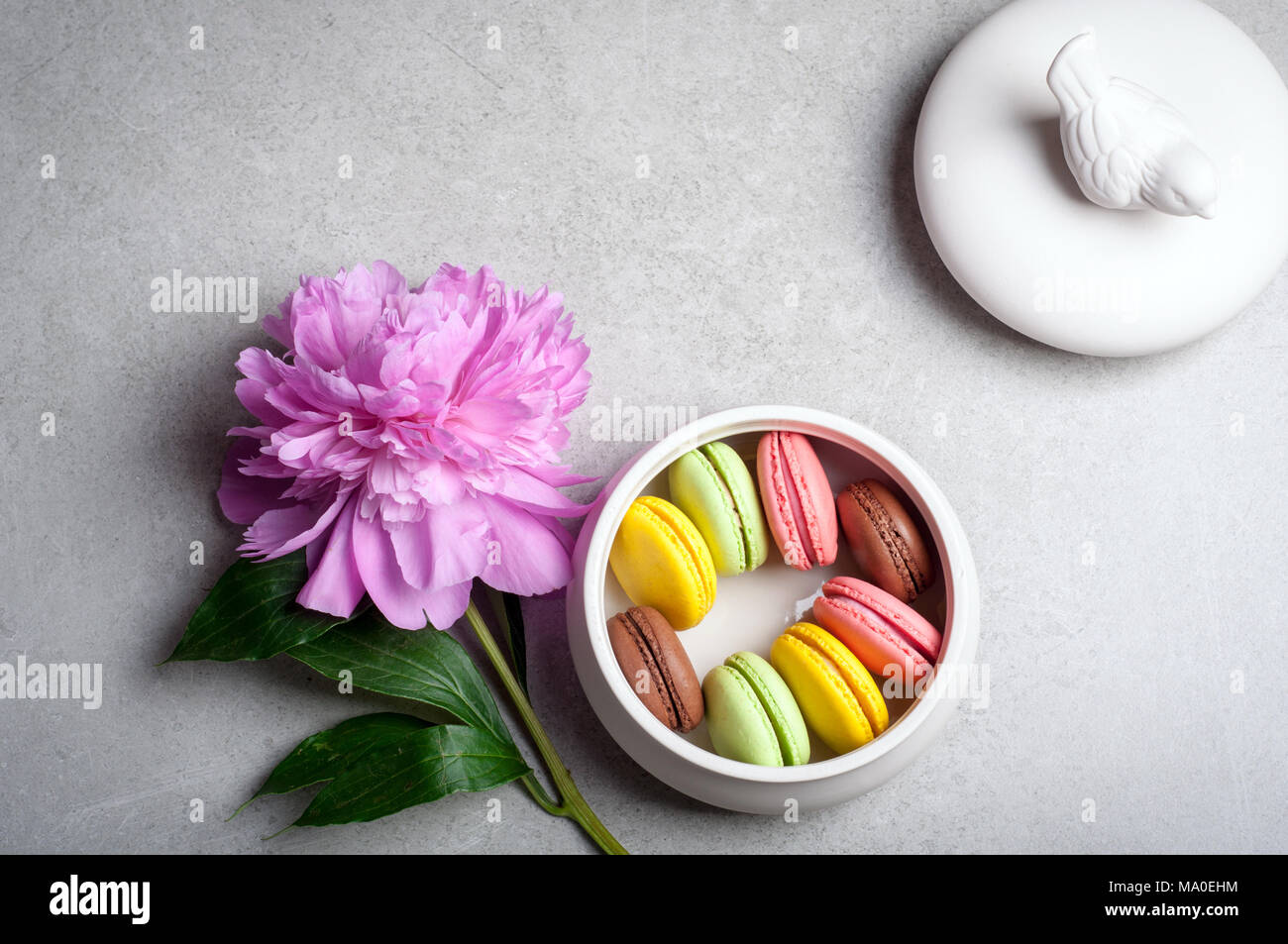 Flower peony, macaroons on grey background. Happy birthday, annivarsary, valentine holidays concept - Stock Image