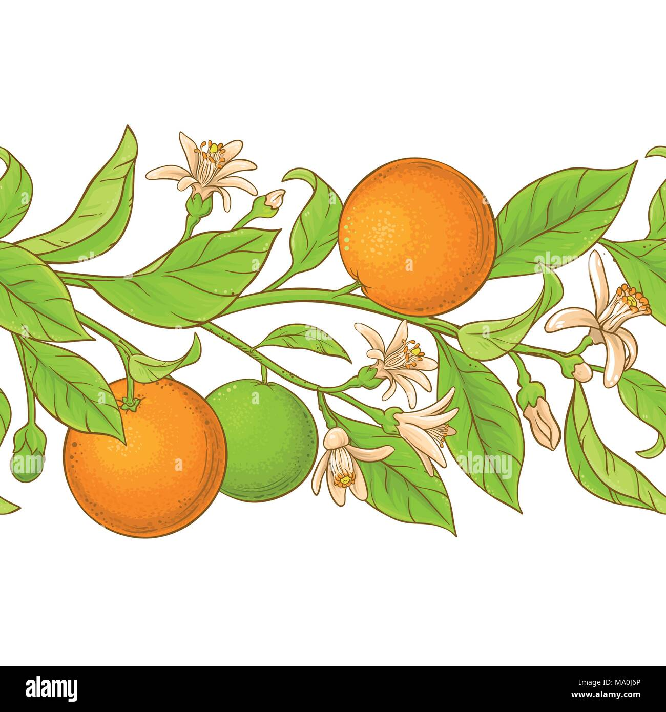Orange Branch Vector Pattern On White Background Stock Vector Image Art Alamy
