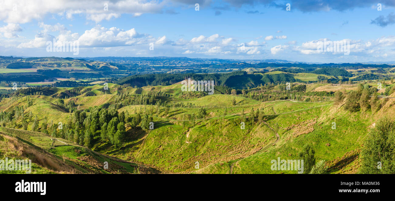 new Zealand Stormy point lookout New Zealand with views of the Rangitikei Valley and best preserved sequences of river terraces in the world manawatu - Stock Image