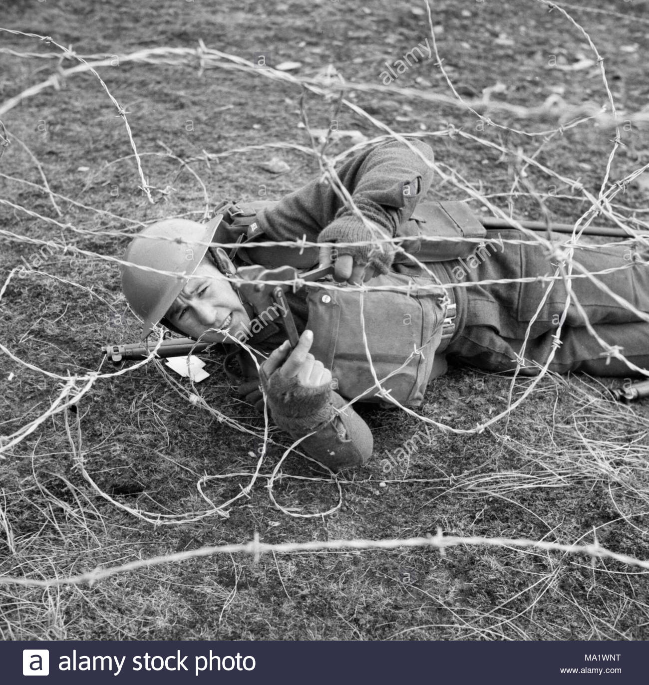 Barbed Wire Cuts Center Home Circuitlogix Pro Student Version 3dlab Cbt Contact Additional A Soldier Of The 7th Battalion Black Watch Through Rh Alamy Com On Horses Cutters Review