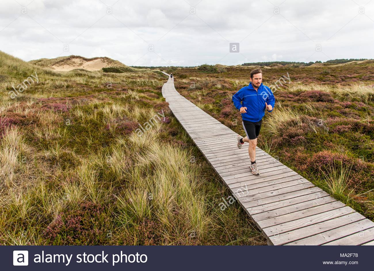 A jogger running along a boardwalk, Amrum - Stock Image