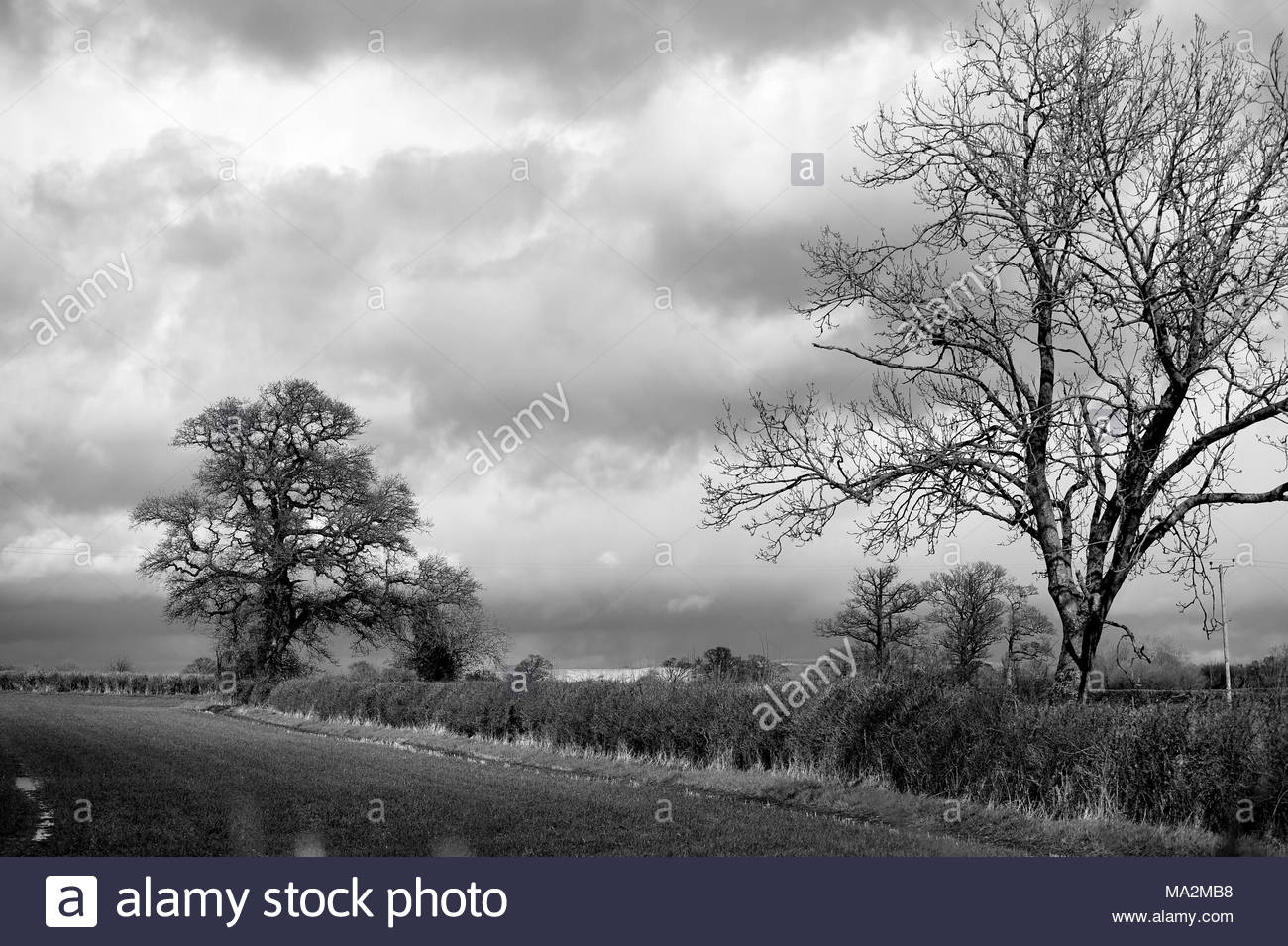 Stormy skies in the county of Wiltshire in the UK - Stock Image