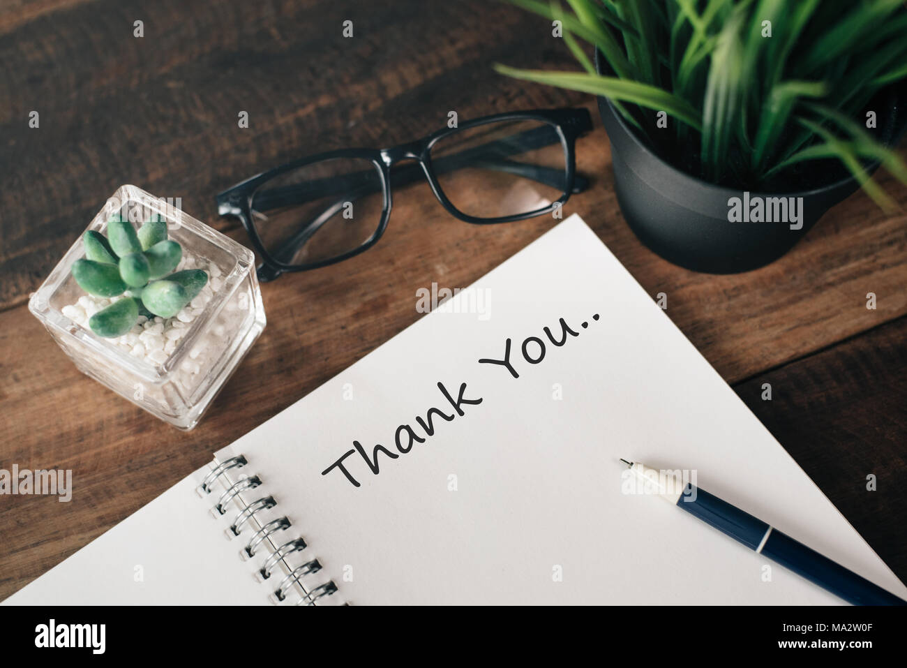 eyeglass, green plant and notebook with word THANK YOU.appreciation concept - Stock Image