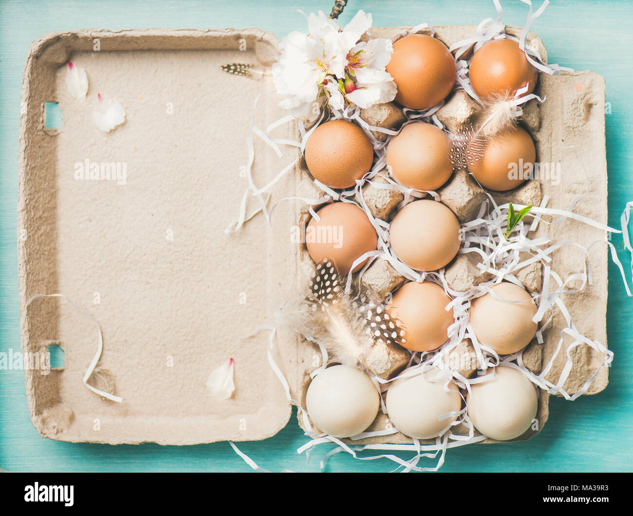 Natural colored eggs for Easter in box, blue background - Stock Image