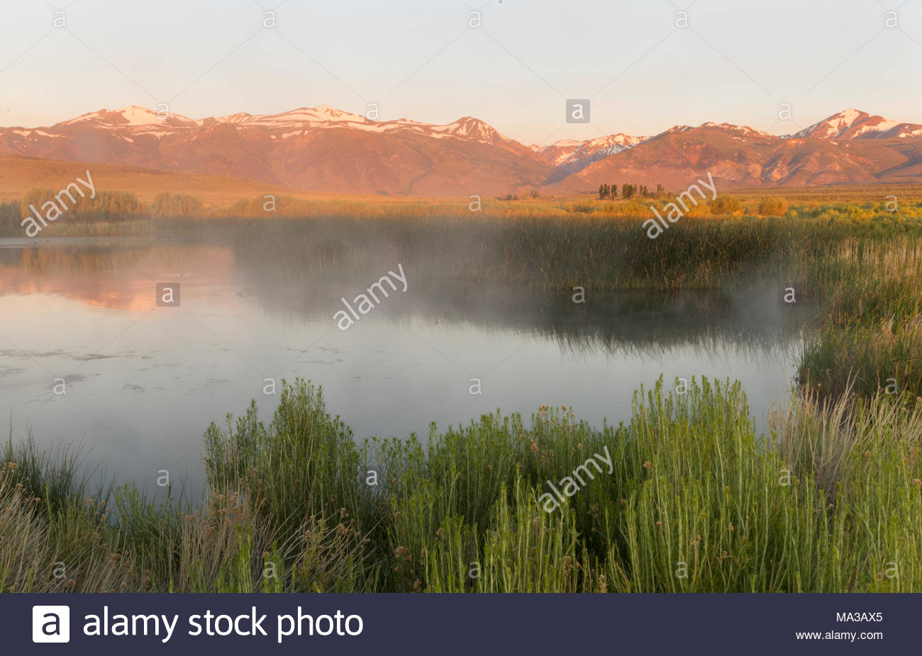 Hot Springs and Dechambeau Ponds at Dawn, Mono Basin National Forest Scenic Area, California - Stock Image