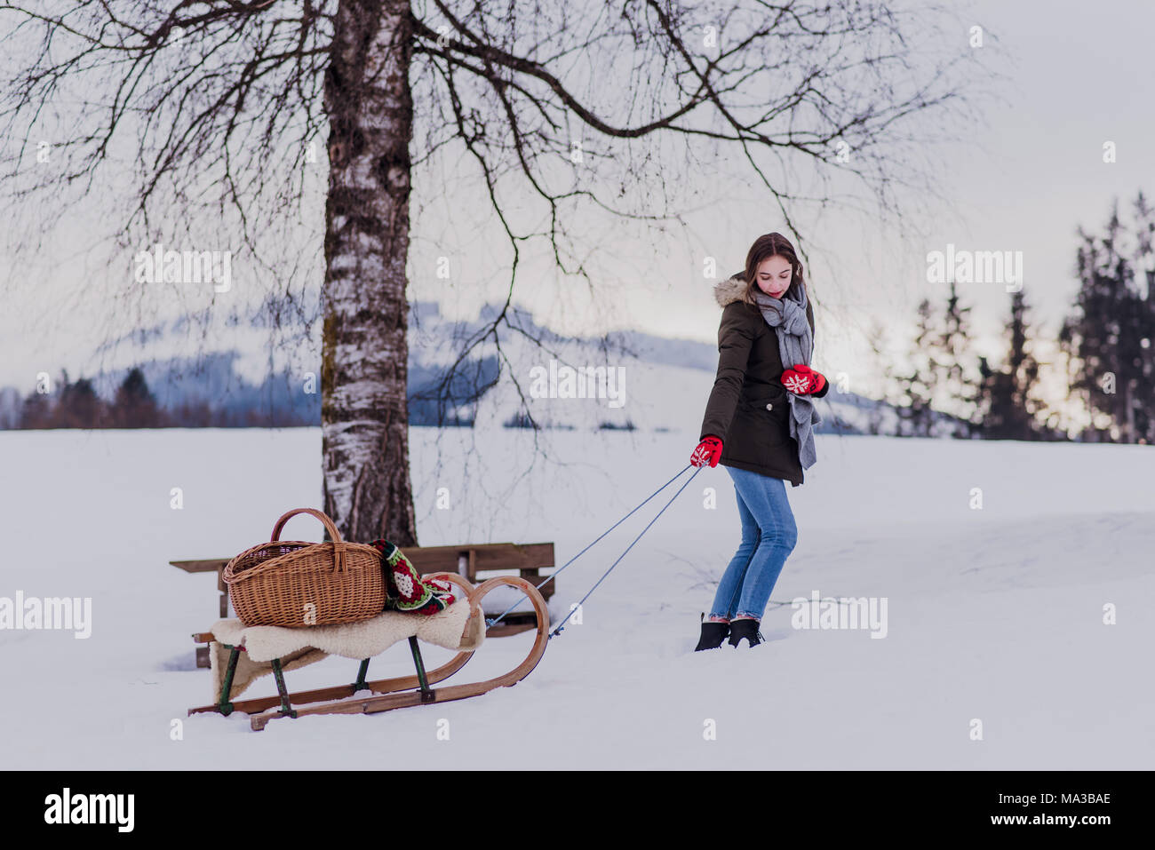 young woman pulls her sledge up the slope - Stock Image