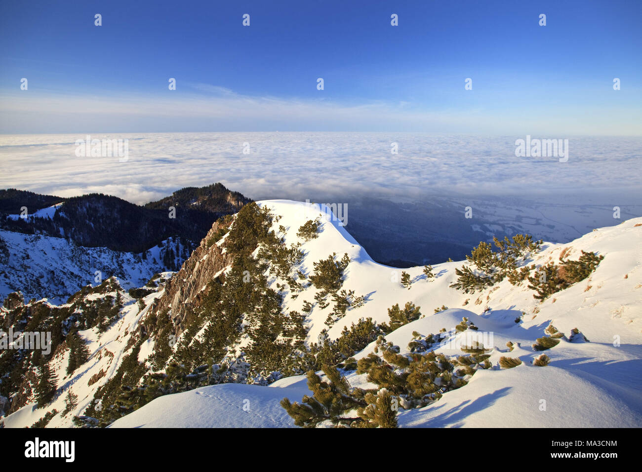 View from the 'Herzogstand' over the ridge, Bavarian pre-alps, alps, Alpine foreland, Bavarian uplands, Upper Bavaria, Bavaria, South Germany, Germany, - Stock Image