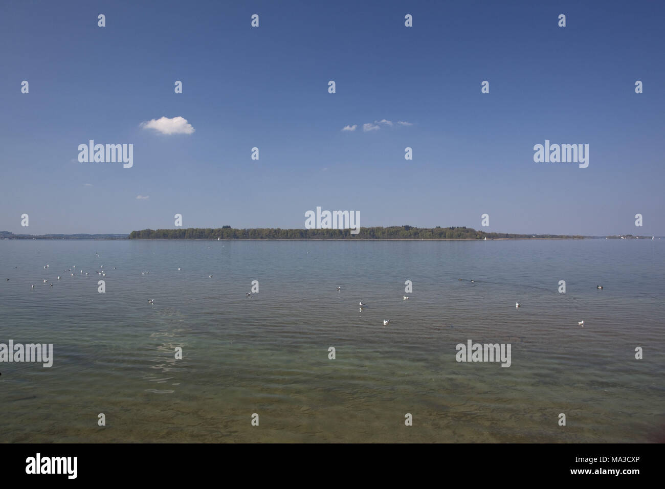 View at island Herrenchiemsee, Chiemgau, lake Chiemsee, Bernau, Felden, Upper Bavaria, Bavaria, South Germany, Germany, Stock Photo