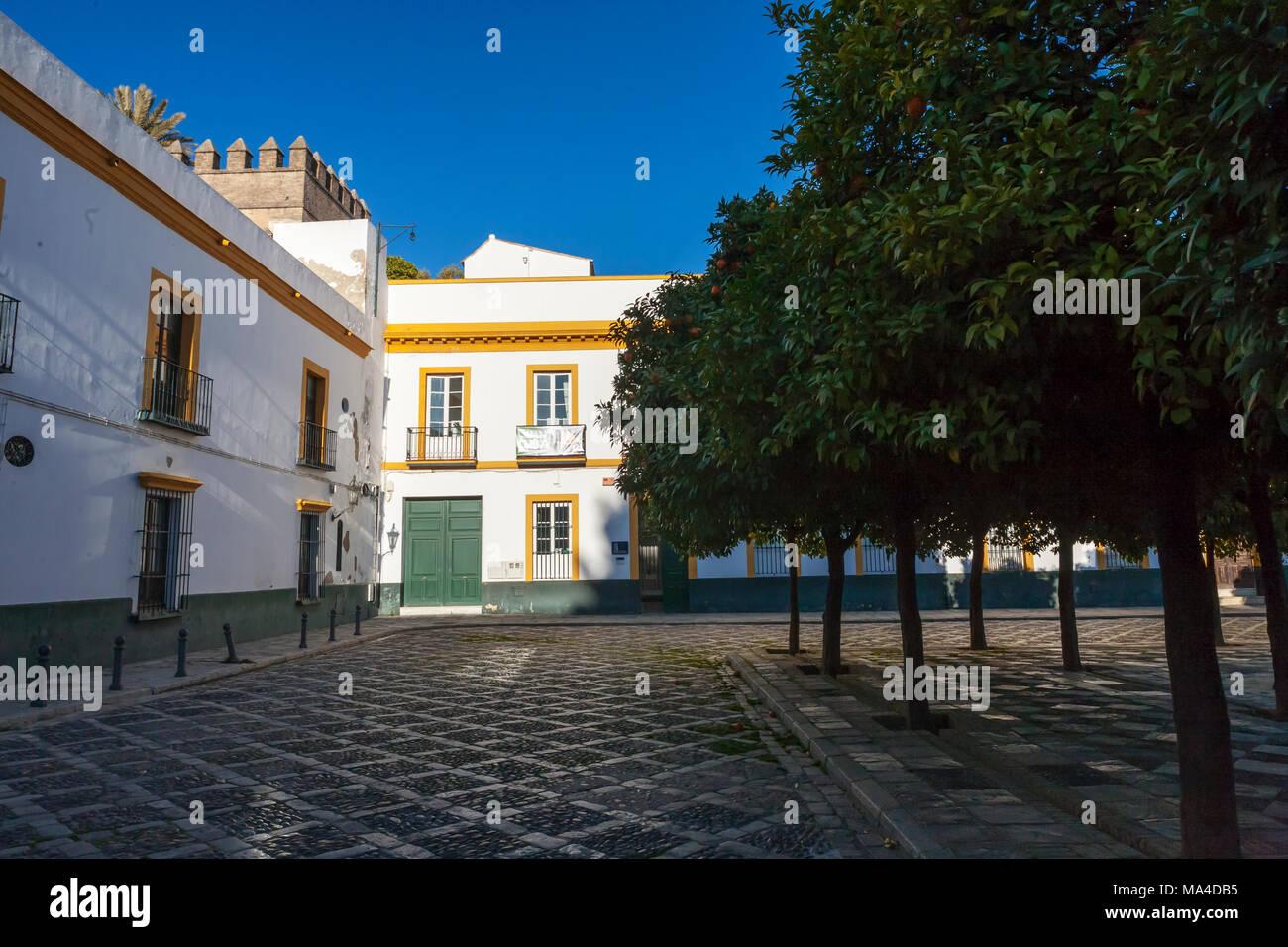 Plaza Patio de Banderas in the Santa Cruz district of Sevilla, Andalucía, Spain - Stock Image
