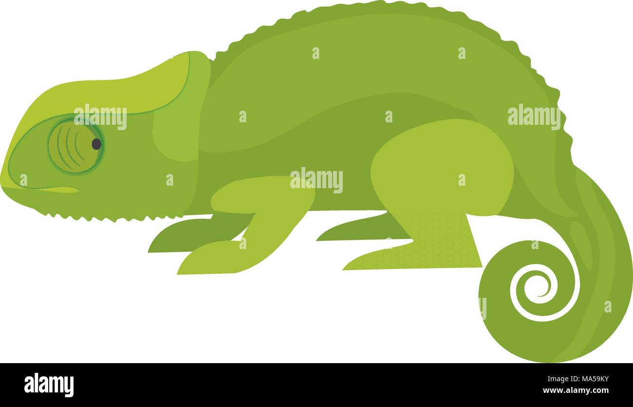 nature chameleon animal with exotic skin - Stock Vector